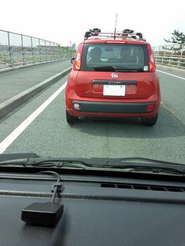 パンダリーノへの道03.JPG
