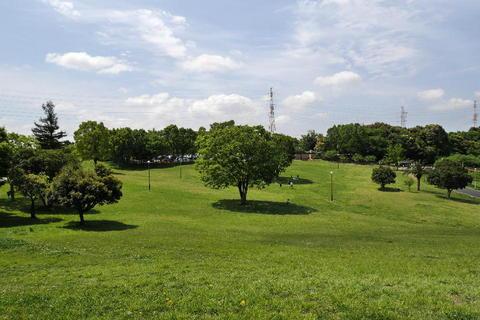 都田総合公園08.JPG